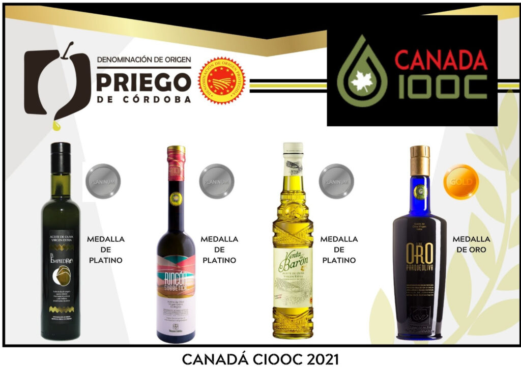 Concurso Internacional de Canadá, CIOOC - DOP Priego de Córdoba