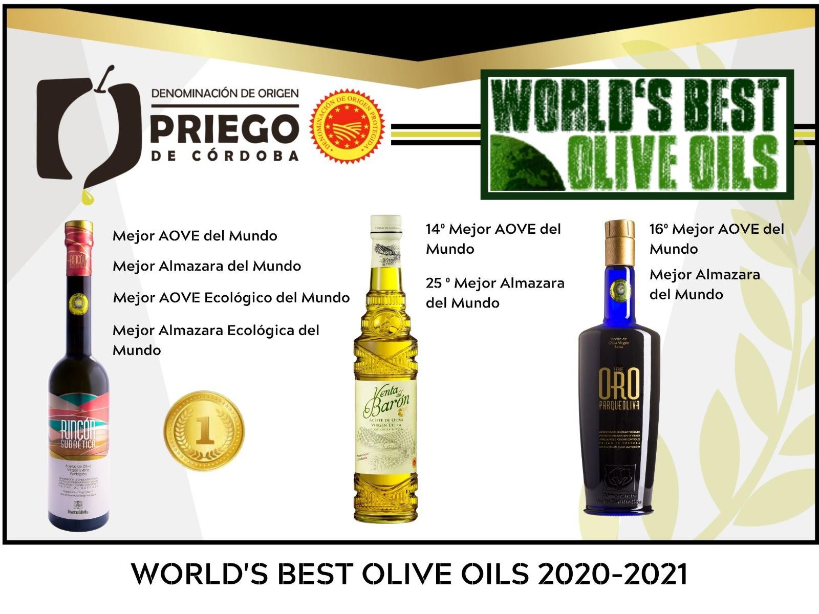 World's Best Olive - DOP Priego de Córdoba